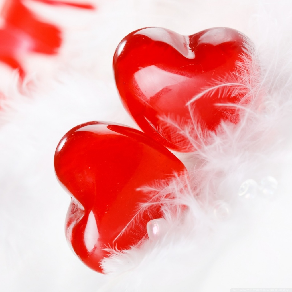 two_hearts_together_2-wallpaper-1024x1024
